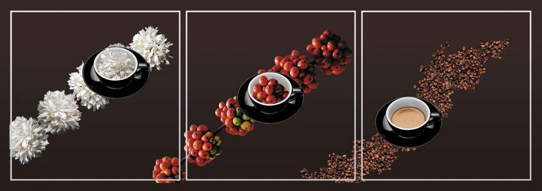 Grafični design foto